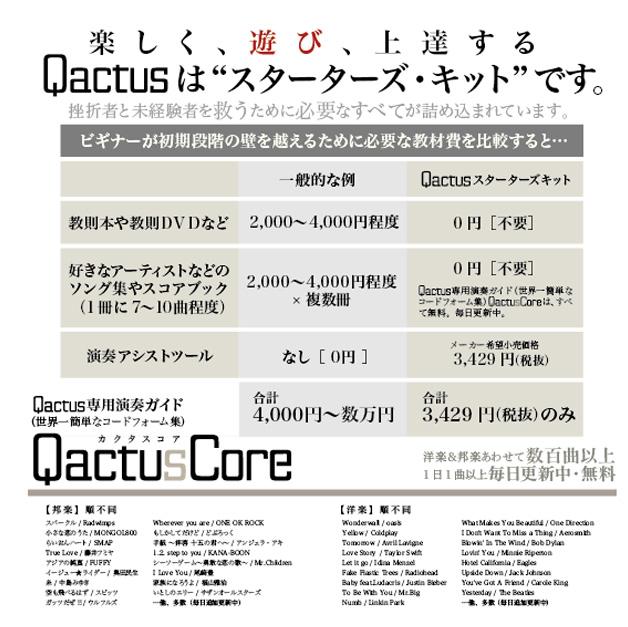 Qactus カクタス ギター 挫折 初心者 使い方 価格