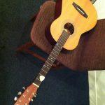 Qactus-カクタスは、どこまでのミニギターに対応できるか