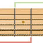 「手が小さいからギターに向かない」の誤解を救う、カクタス