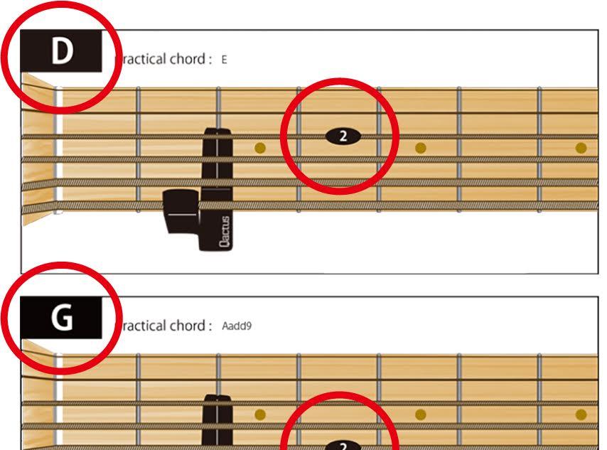 ビギナーのための、ギター挫折者をゼロにする国際特許、Qactus-カクタス